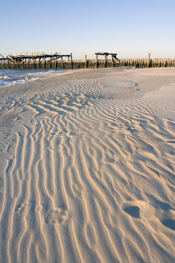 Tarde del gusano en playa del invierno fotografía de archivo