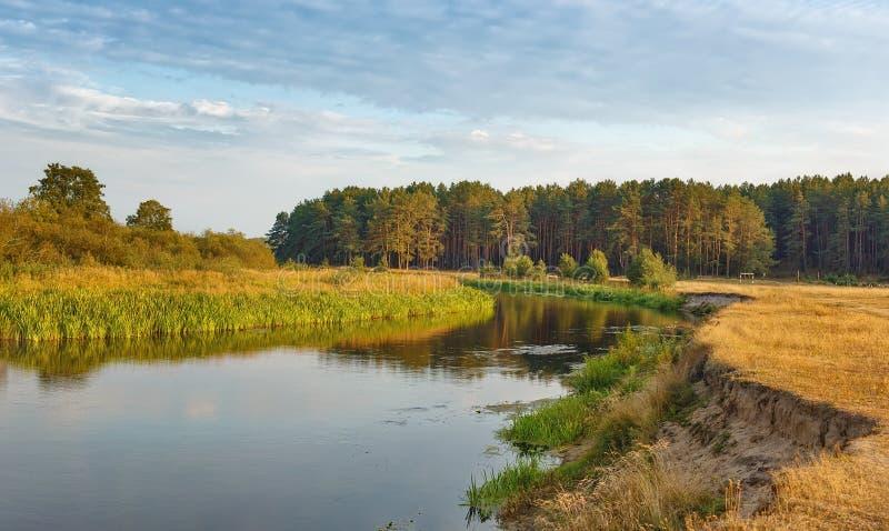 Tarde del verano en el río reservado imagen de archivo