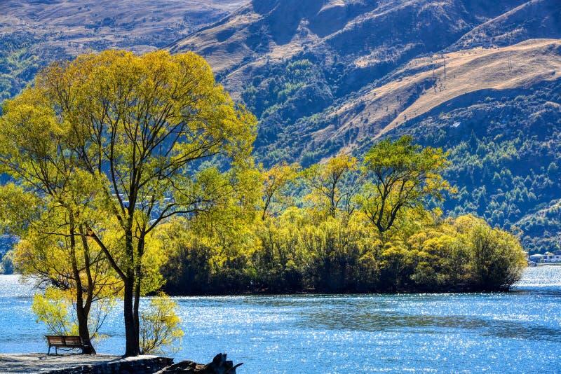 Tarde en el lago en Nueva Zelanda fotos de archivo libres de regalías