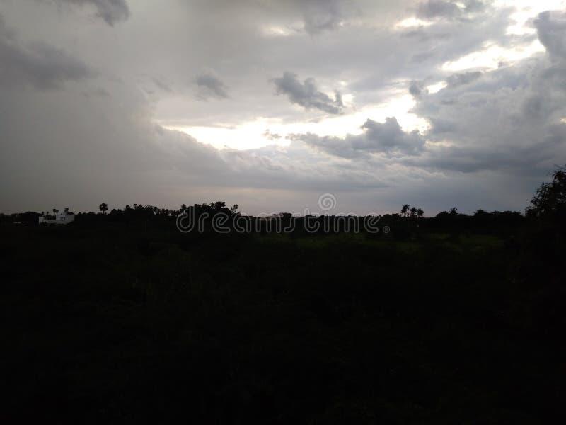 Tarde lluviosa nublada del Darky del bosque imagenes de archivo