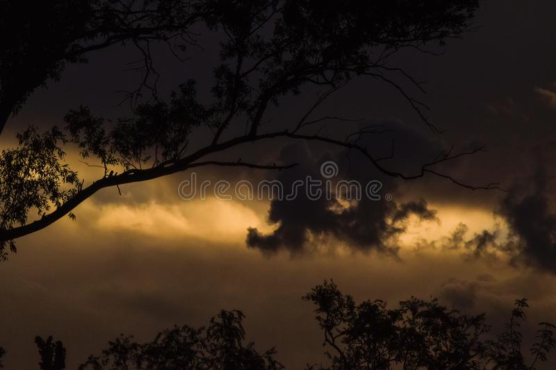 Tarde oscura royalty free stock images