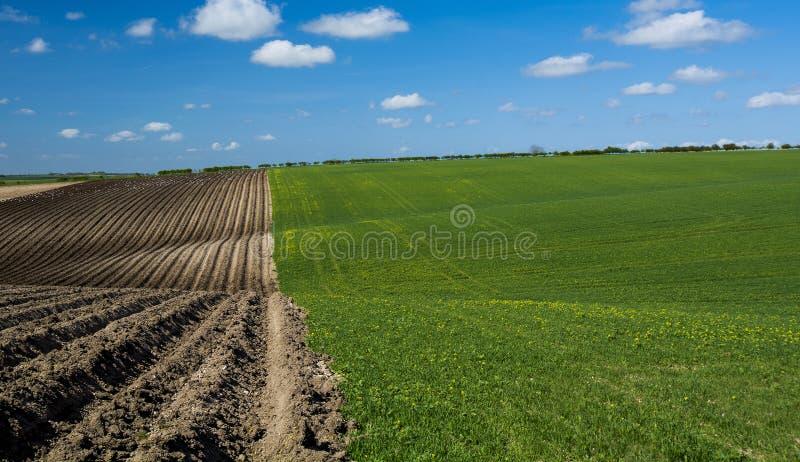 Tarde rural fotografia de stock royalty free