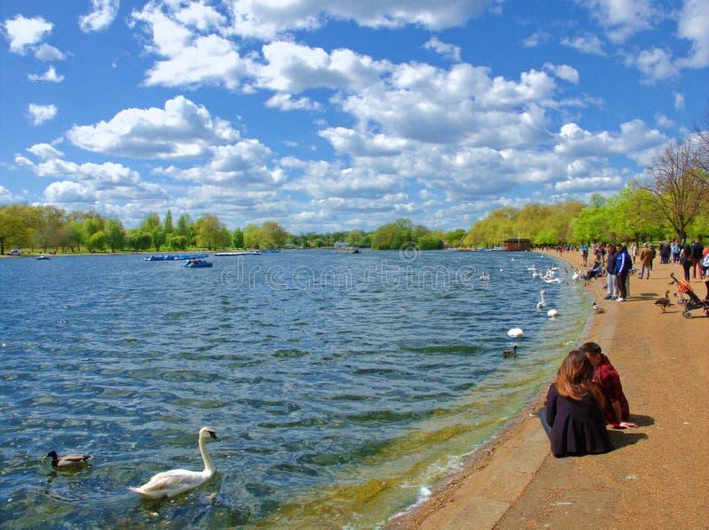 Tarde soleada en el lago serpentino imagen de archivo