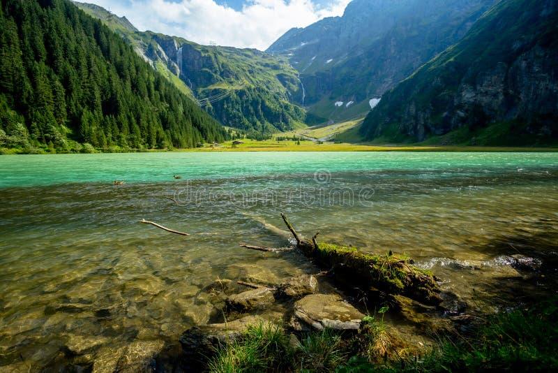Tarde soleada y brillante en el lago Hintersee con dos patos fotos de archivo libres de regalías