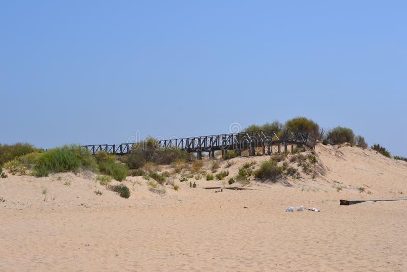 Tarde Sun en la playa imagenes de archivo