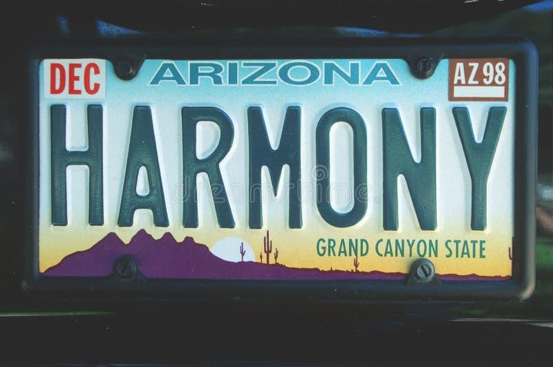 Targa di immatricolazione di vanità - Arizona immagini stock libere da diritti
