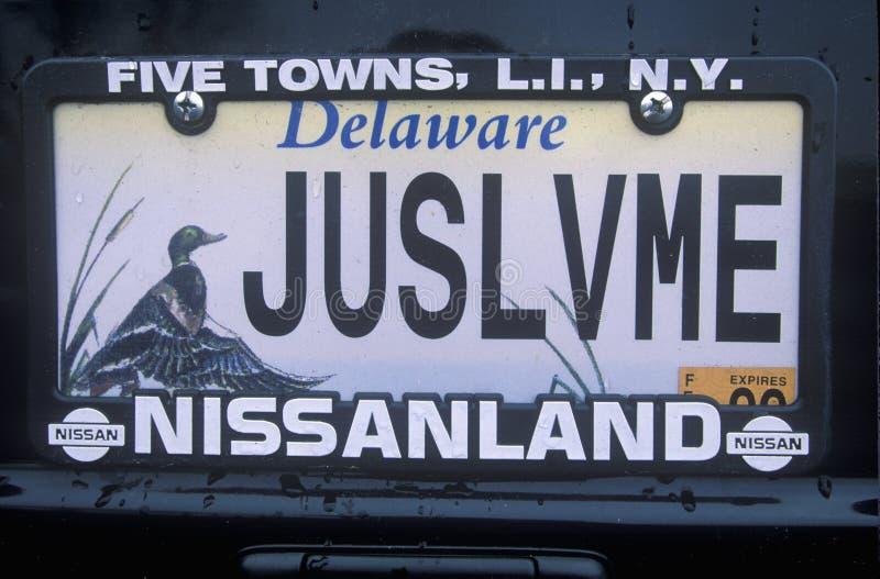 Targa di immatricolazione di vanità - Delaware immagini stock libere da diritti