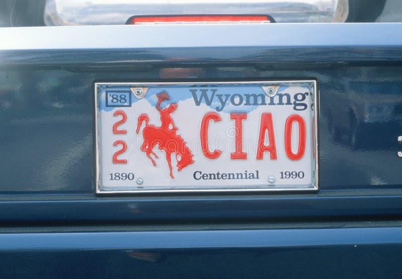 Targa di immatricolazione nel Wyoming fotografie stock libere da diritti