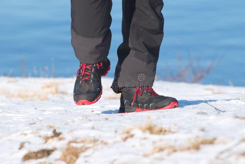 target101_0_ magii spoczynkowy krótki zima drewno Buty na śniegu zdjęcia royalty free