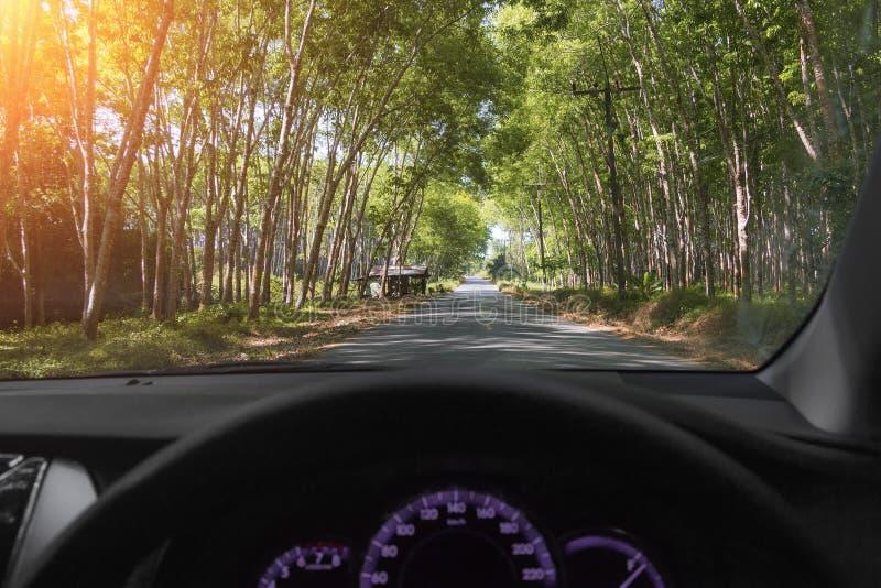 TARGET37_0_ samochodem Asfaltowa droga wśród gumowego lasu w Tajlandia, Phuket Lato przygoda niesamowite krajobrazu zdjęcia stock