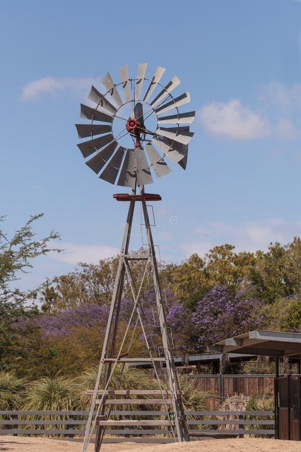 target611_1_ wiatrowego wiatraczek zdjęcie royalty free