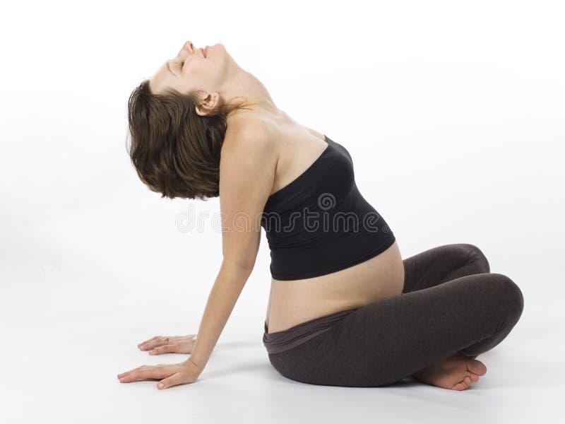 target1535_0_ kobieta w ciąży obraz stock