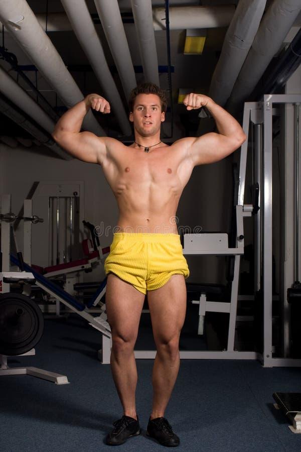 target1796_0_ bodybuilder potomstwa obrazy royalty free