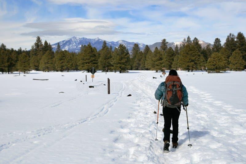 target1891_0_ śnieżna kobieta obrazy stock
