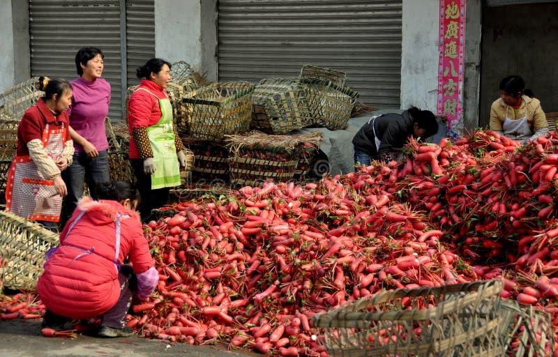target2056_1_ kobiety pengzhou porcelanowe rzodkwie obraz stock