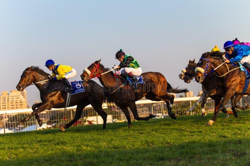 TARGET470_0_ Durban końscy Dżokeje Lipiec fotografia stock