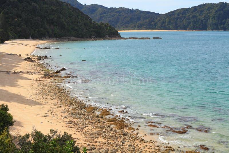 TARGET732_0_ w Abel Park Narodowy Tasman obraz royalty free