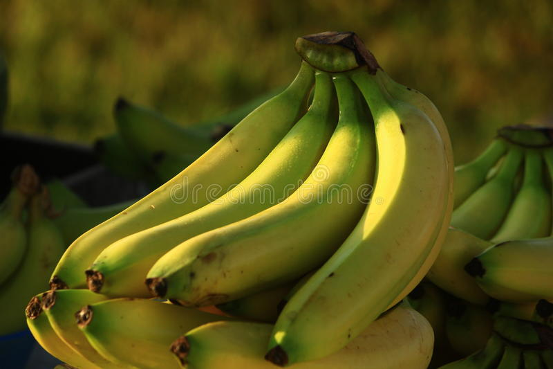 Targowi banany zdjęcie royalty free