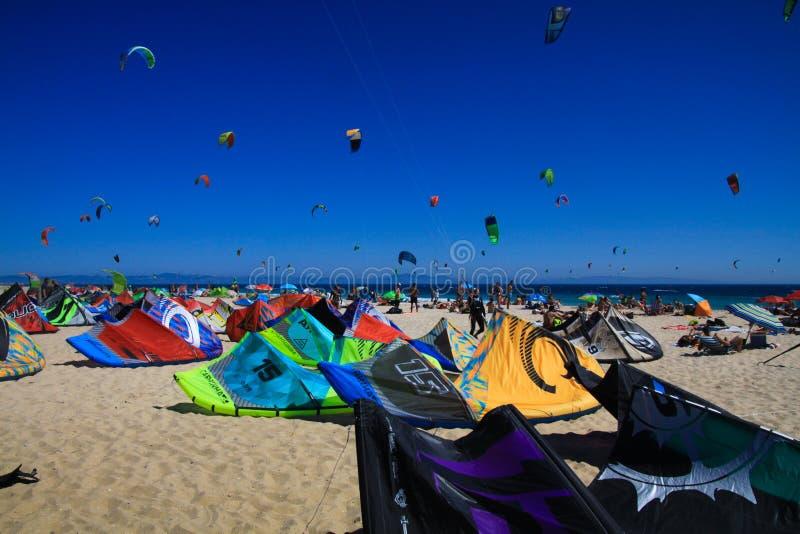 TARIFA COSTA DE LA LUZ, PLAYA DE BOLONIA, SPANIEN - JUNI, 18 2016: Drakesurfare på stranden i Spanien arkivbilder