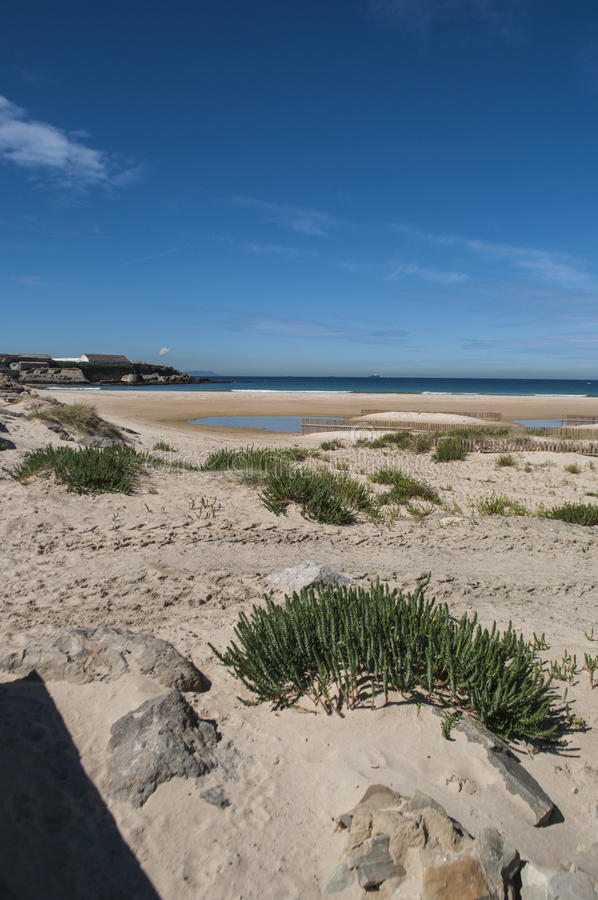 Tarifa, Spain, Andalusia, Iberian Peninsula, Europe. Spain, 23/04/2016: view of Playa de los Lances, the biggest beach of Tarifa, town on the southernmost coast stock images