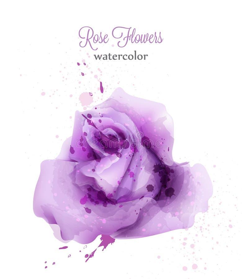 Tarjeta aislada rosa del vector de la violeta de la acuarela La invitación de la boda o ahorra la plantilla de la fecha Fondos he ilustración del vector