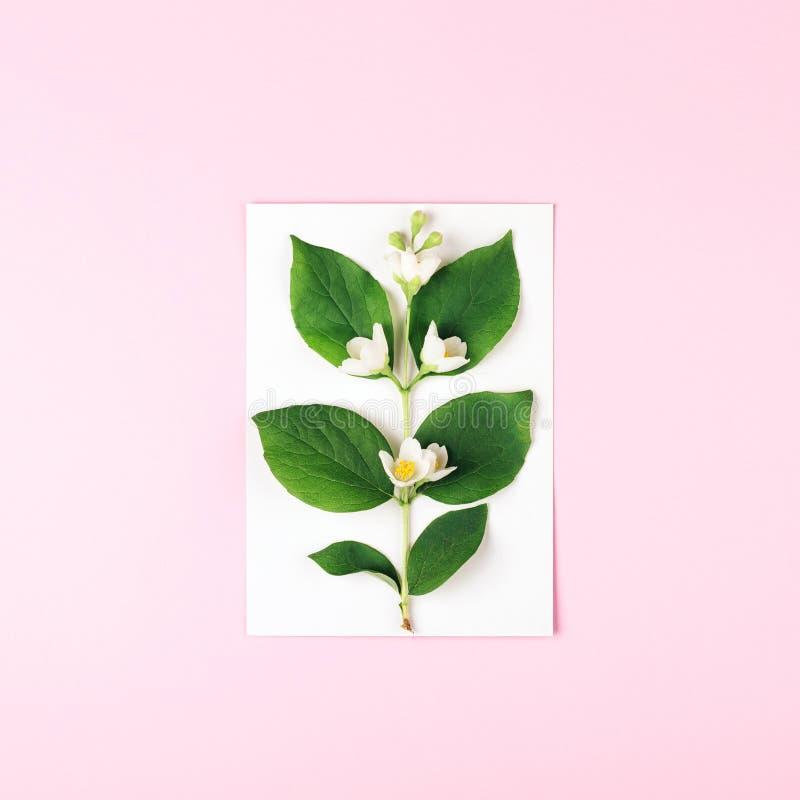 Tarjeta blanca con la flor en fondo rosado imagen de archivo libre de regalías
