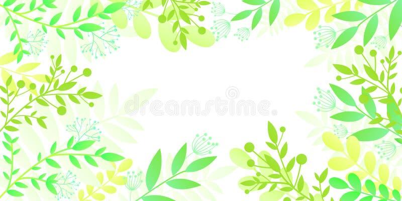 Tarjeta colorida de la invitación con las plantas verdes claras Marco de la plantilla en el estilo plano, fondo blanco aislado Ve ilustración del vector