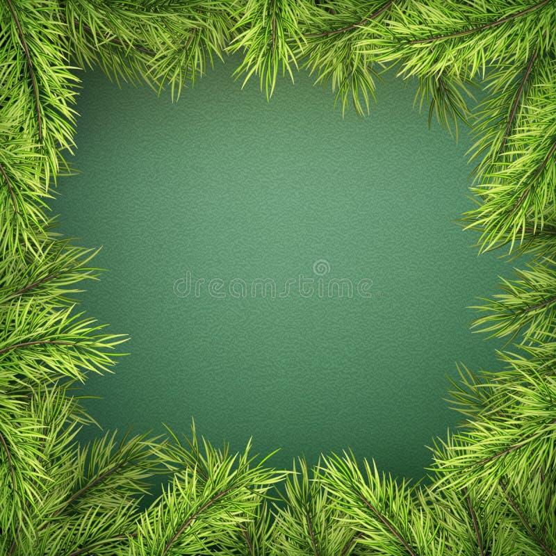 Tarjeta con la frontera del árbol de navidad, marco realista de las ramas del abeto en fondo verde EPS 10 ilustración del vector