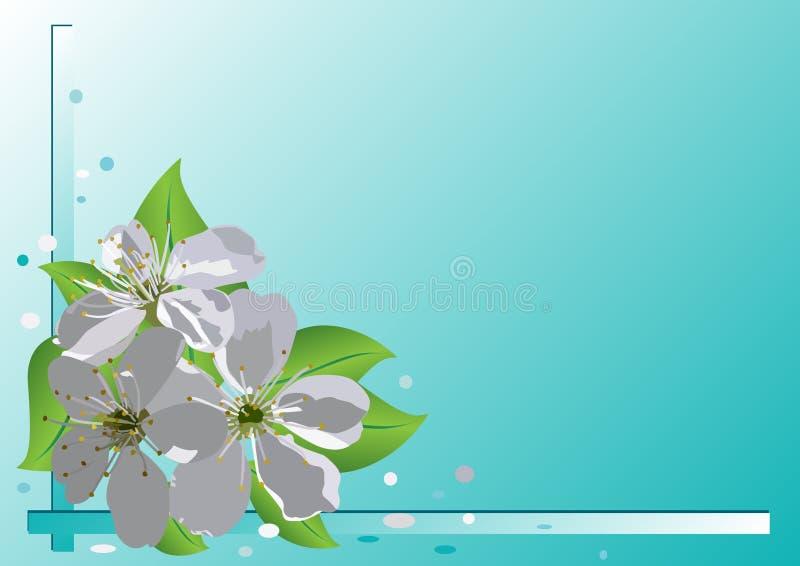 Tarjeta con las flores de la cereza libre illustration