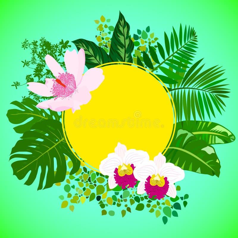 Tarjeta con las hojas tropicales de las flores, de la palma y del plátano ilustración del vector