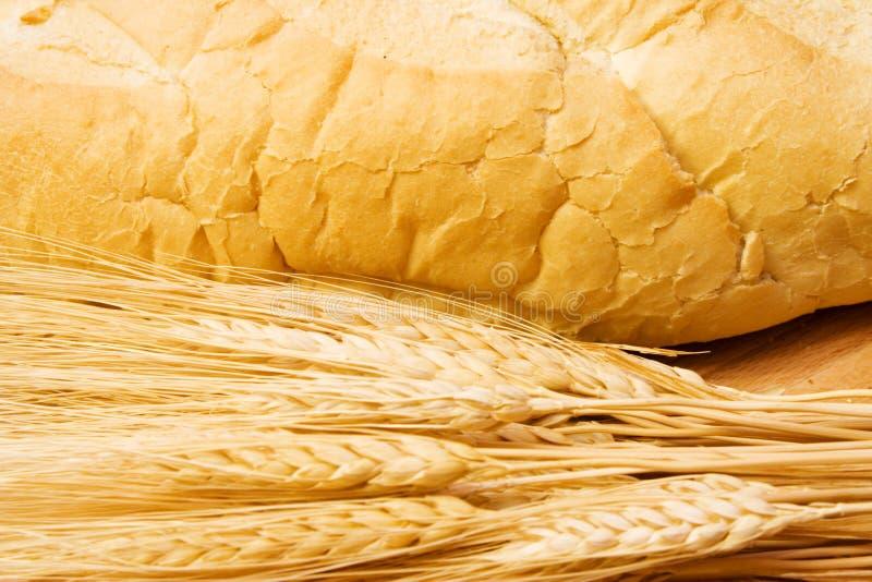 Tarjeta de corte del pan fotografía de archivo libre de regalías