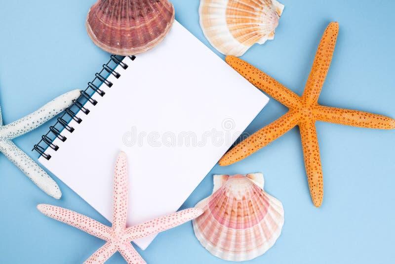 Tarjeta de felicitación con las cáscaras y estrellas de mar y lugar para el texto imagen de archivo