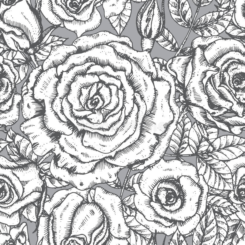 Tarjeta de felicitación elegante del vintage con las flores gráficas (rosas) stock de ilustración
