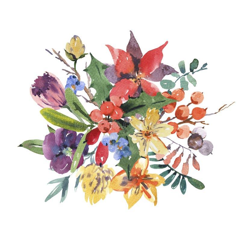 Tarjeta de felicitación floral de la acuarela del invierno con las ramas, acebo, flo ilustración del vector
