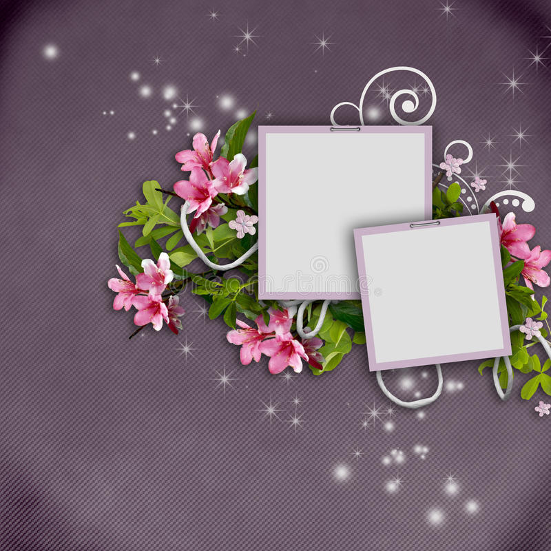 Tarjeta de felicitación hermosa con los marcos de la foto libre illustration