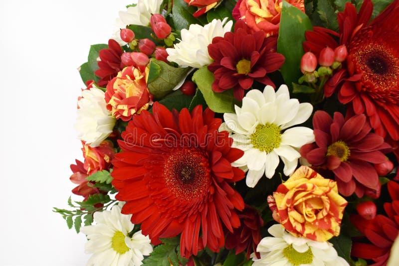 Tarjeta de felicitación hermosa de la flor Copie el espacio foto de archivo