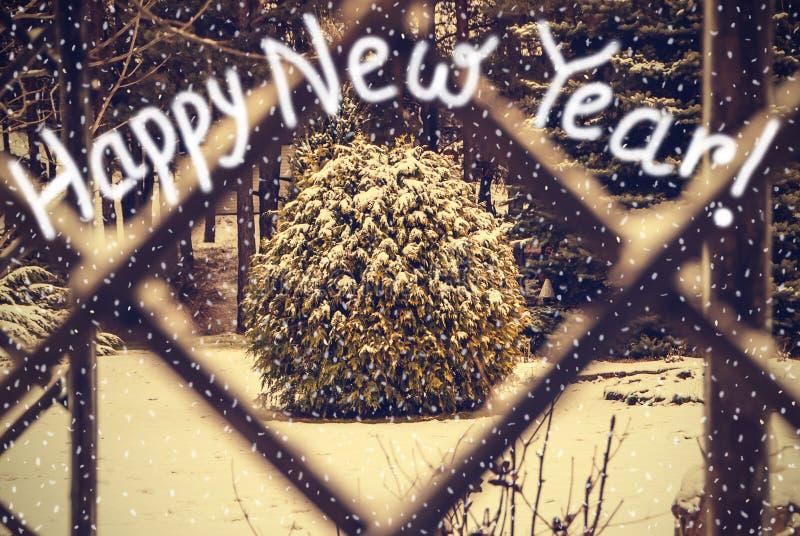 Tarjeta de felicitación de la Feliz Año Nuevo del vintage de los árboles del invierno mirados a través de la ventana fotos de archivo libres de regalías