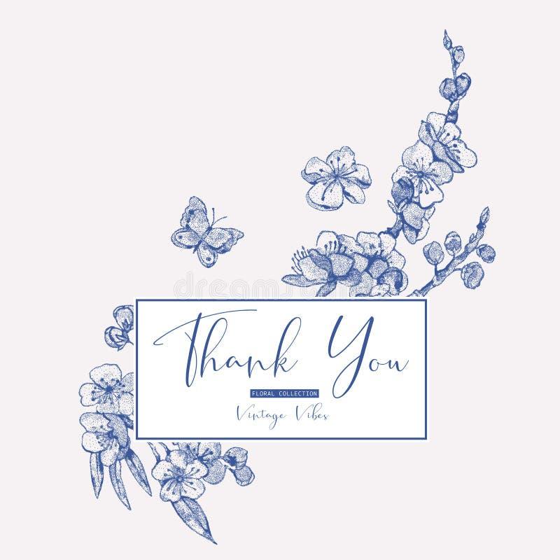 Tarjeta de felicitación de la primavera del vector, ramo floral del vintage con las ramas florecientes de la cereza stock de ilustración