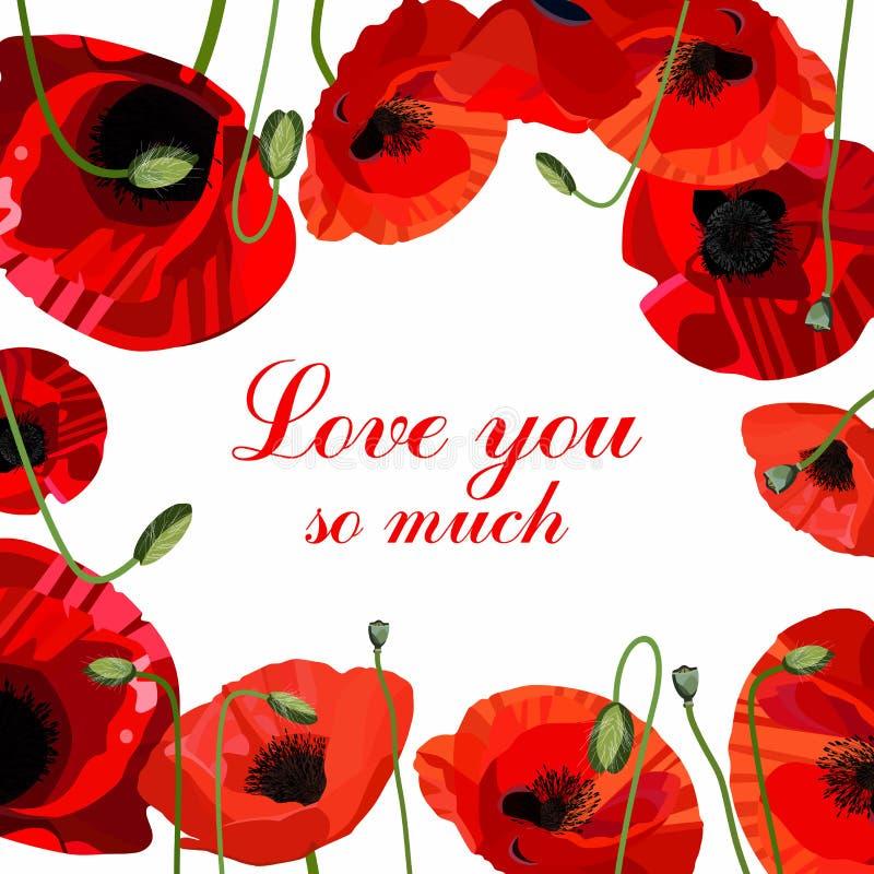 Tarjeta de felicitación roja del día del ` s de la tarjeta del día de San Valentín de la amapola imágenes de archivo libres de regalías