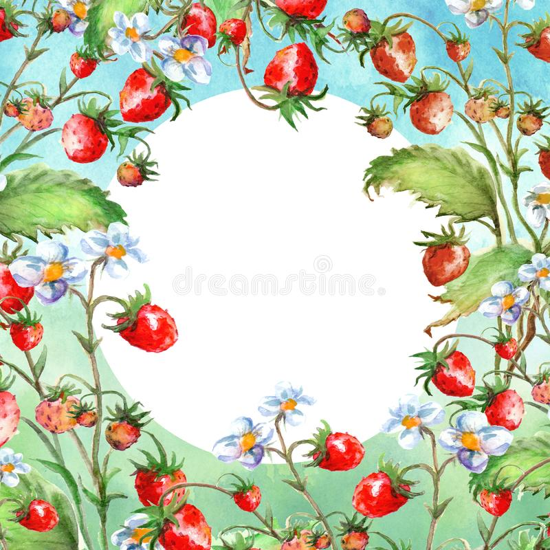 Tarjeta de felicitaci?n de la acuarela, invitaci?n con una fresa de la planta Arbusto floreciente con una baya y una flor rojas stock de ilustración