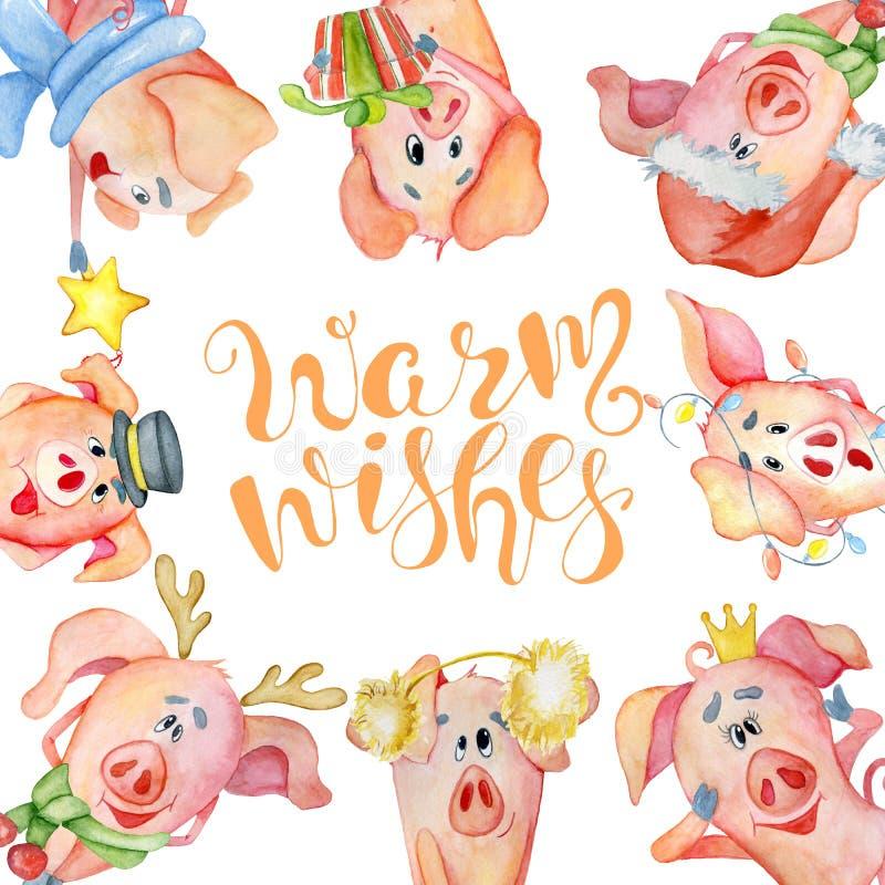Tarjeta de la acuarela de la Feliz Navidad con los cerdos lindos y la mano divertidos dibujados poniendo letras a deseos caliente ilustración del vector