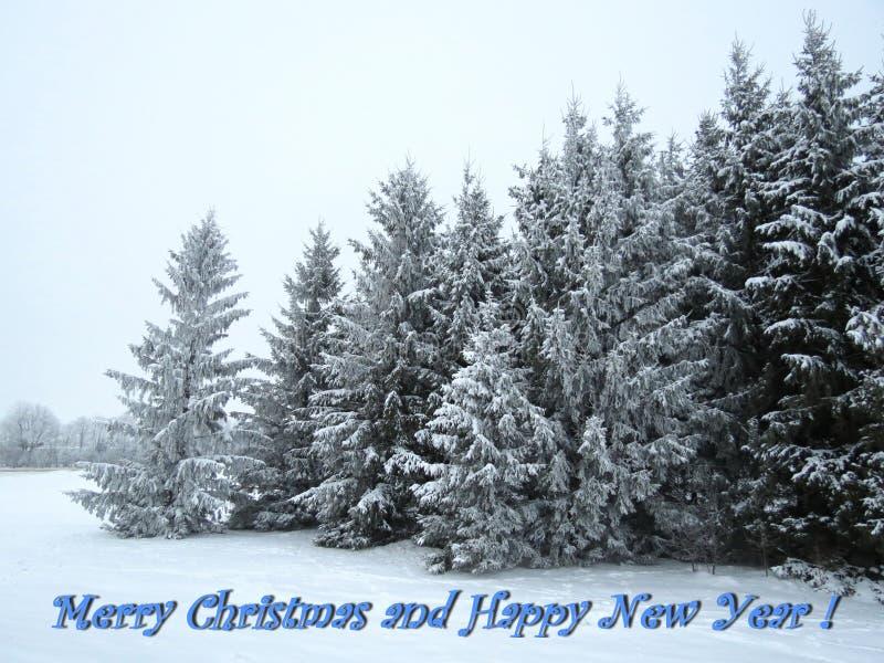 Tarjeta de la Feliz Navidad y de la Feliz Año Nuevo hecha usando los árboles en invierno, Lituania fotos de archivo