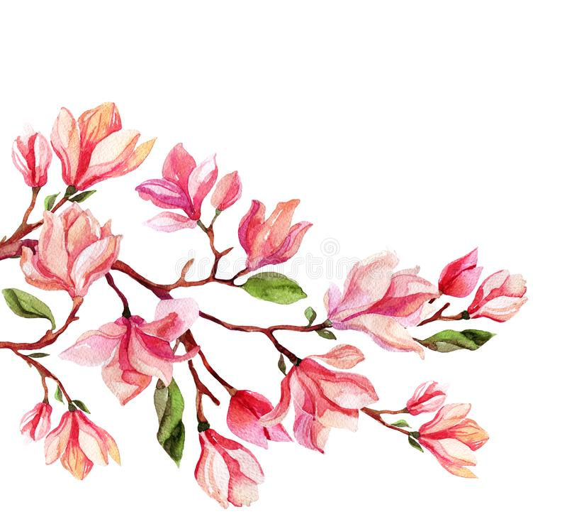Tarjeta de la flor de la magnolia de la acuarela ilustración del vector