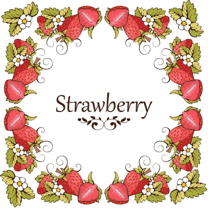Tarjeta de la fresa stock de ilustración