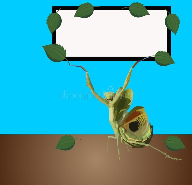 Tablero de la muestra de la mantis religiosa