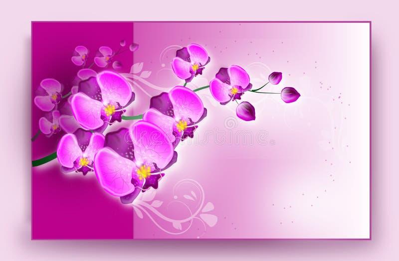 Tarjeta de la orquídea stock de ilustración