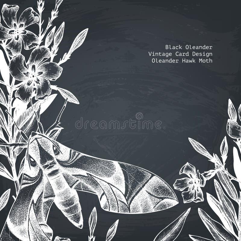 Tarjeta de la polilla de halcón del adelfa Ejemplo del vector de la mariposa exhausta de la mano Fondo de los insectos del vintag stock de ilustración