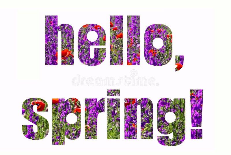 Tarjeta de la primavera con las letras Campo de flores rojo y púrpura ilustración del vector