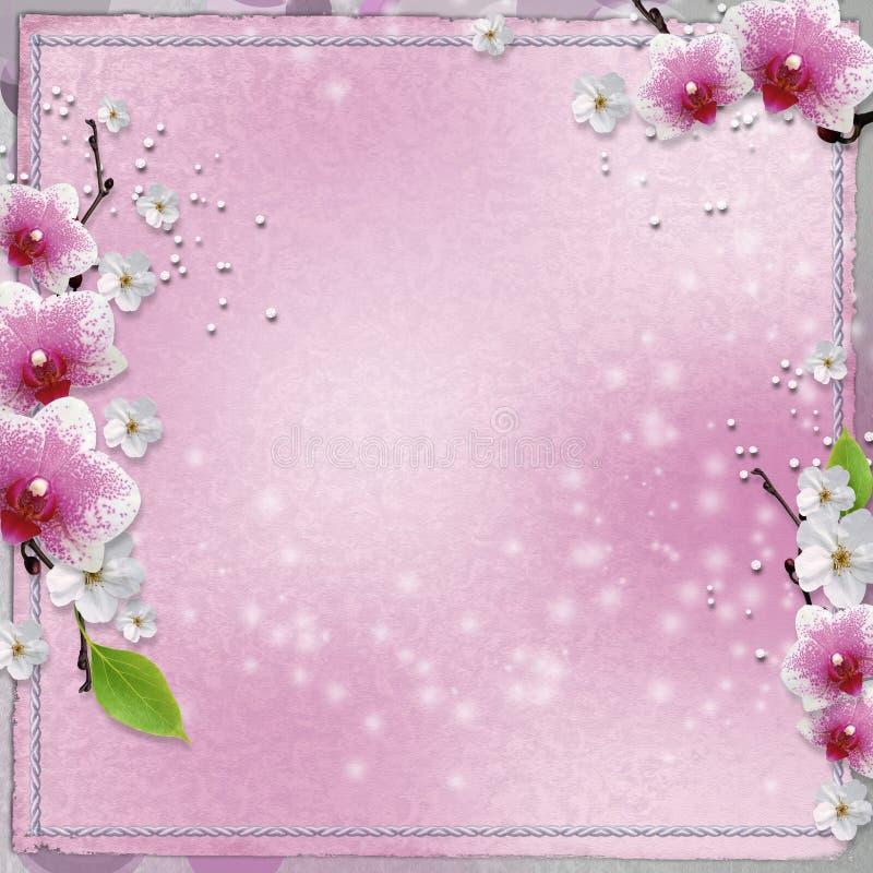 Tarjeta de la vendimia con la orquídea ilustración del vector