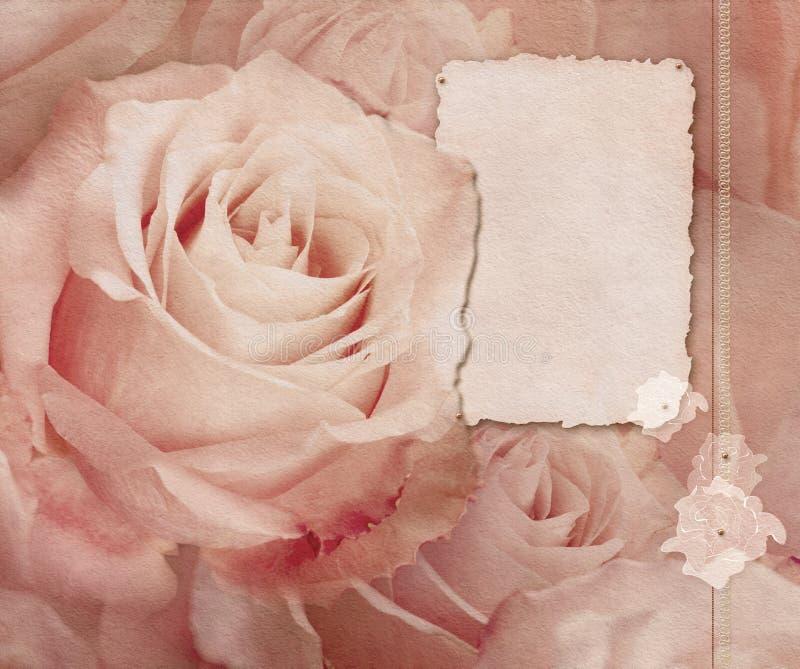 Tarjeta de la vendimia con las rosas rosadas fotografía de archivo libre de regalías